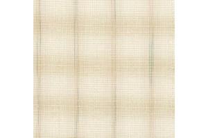 Yarn dyed Fabric [DY1701-1]
