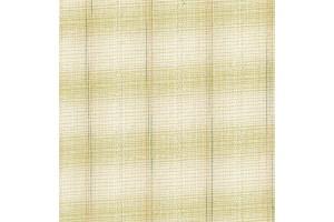Yarn dyed Fabric [DY1701-4]